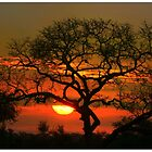Satara Sunset by jozi1