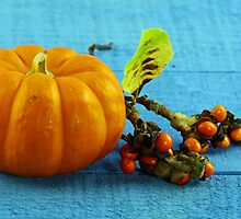 Pumpkin and berries by Dipali S