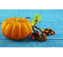 Pumpkin and berries Photographic Print