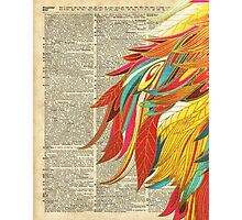 Colourful flaming feathers over old encyclopedia page Dictionary Art Photographic Print