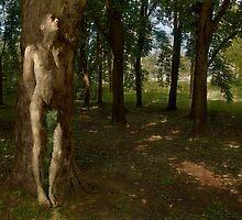 Tree Man by Massimo Serzio