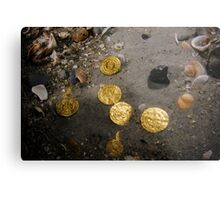 Scuba Divers uncover a hoard of 2000 gold coins from the Fatimid period Metal Print