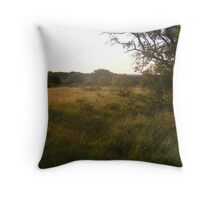 Lost Maples 002 Throw Pillow