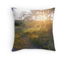 Lost Maples 003 Throw Pillow