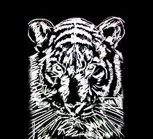 Portrait of a Tiger by werxj