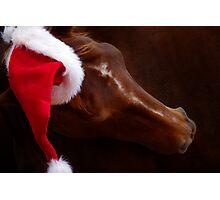 Russet Christmas Photographic Print