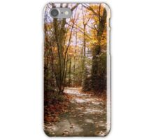 Taking a Walk in the Woods      ^ iPhone Case/Skin