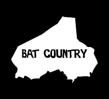 Bat Country by because-skulls