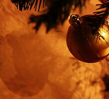 Bauble on the wall by MichelleRees
