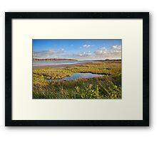 Banks of the Orwell river Framed Print
