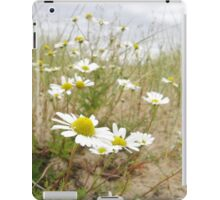 White n Yellow Lisfannon beach County Donegal Ireland iPad Case/Skin