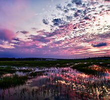 Broad Creek September Sunset Sky by jimcrotty