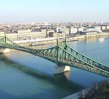 The Liberty Bridge (Budapest, Hungary). by twebster92