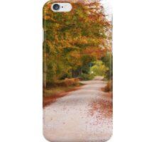 Autumn Colours iPhone Case/Skin