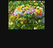 Rainbow Leaves at Escot Devon UK Tank Top