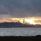 San Francisco Sunset by down23