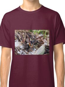Wasps Black and Orange 6 (c)(t), a moment of their life  by Olao-Olavia par Okaio Créations Classic T-Shirt