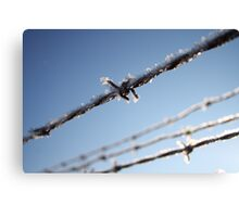 Frost On Barbed Wire Canvas Print