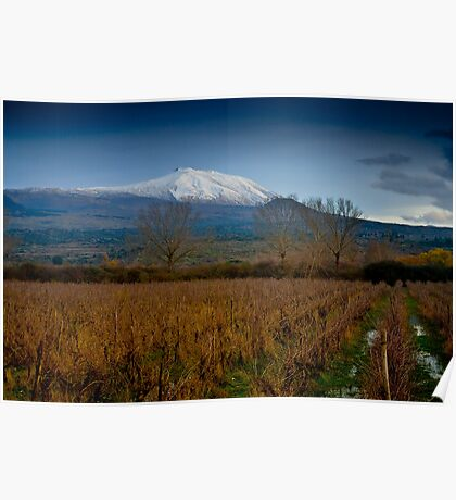 Panoramic view of Mt. Etna from lake Gurrida Poster