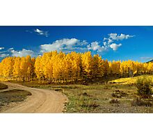 Fall Rural Roads Photographic Print