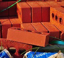 Red Bricks by joevoz