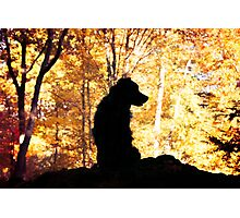 Farley in Fall Photographic Print
