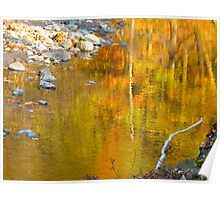 Foliage waters Poster