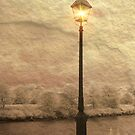Solitary Lamp 3 by Zoe Marlowe