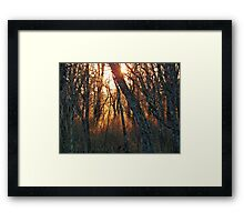 Retreat of the Light Framed Print