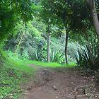 Eva's Garden  by mjaleman