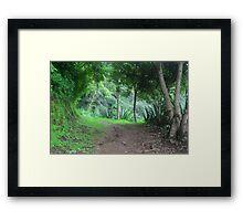 Eva's Garden  Framed Print