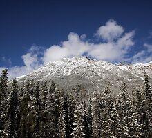 Rocky Mountains - Jasper - Canada by Erin McMahon