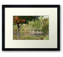 The Pond At George George Park In The Fall Framed Print
