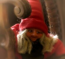 Christmas Visitor by shutterbug2010