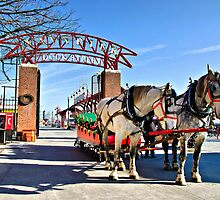 The Navy Pier Christmas Sleigh by James Watkins