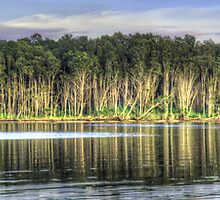 Tree Reflections - Narrabeen Lakes, Sydney Australia (Second Cut) - The HDR Experience by Philip Johnson
