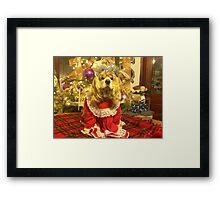 Maggie Pooh Bear at Christmas Framed Print