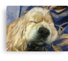 Sleeping Maggie Canvas Print