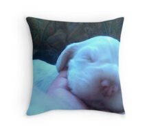 Newborn Duncan Throw Pillow