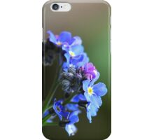 Forget-me-not iPhone case iPhone Case/Skin