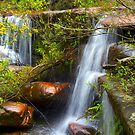 America Bay waterfalls by Doug Cliff