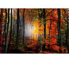Light Colors Photographic Print