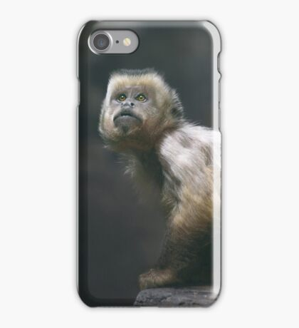 Weeper capuchin iPhone Case/Skin