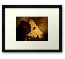 Cows Head Framed Print