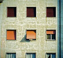 Twelve windows by Silvia Ganora