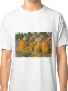 Aspen Red Classic T-Shirt
