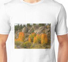 Aspen Red Unisex T-Shirt