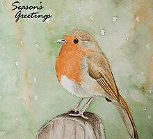 Cute Robin Watercolour Season's Greetings by Gillian Cross