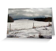 Wrapped in Winter Greeting Card