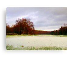 Snowy Fields Canvas Print